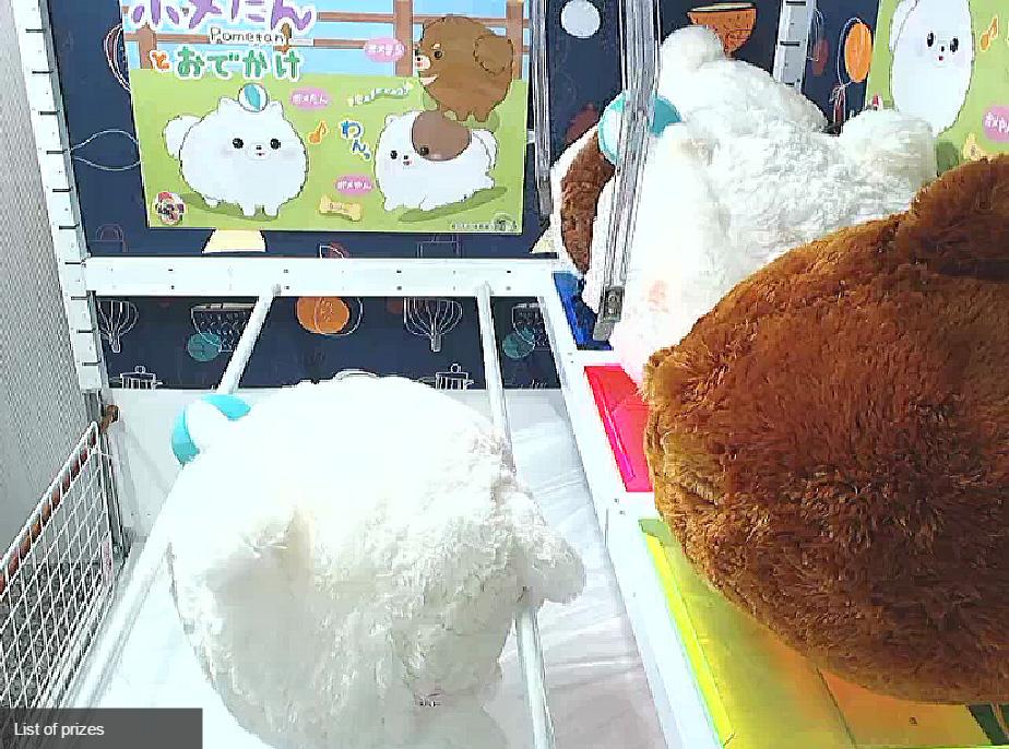 NuuNeoI - ลองเล่น Toreba ตู้คีบตุ๊กตาญี่ปุ่นแบบออนไลน์ คีบ